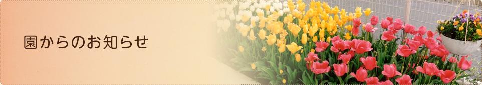 明日(4月20日)の閉園について